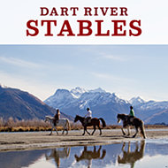 Dart Stables